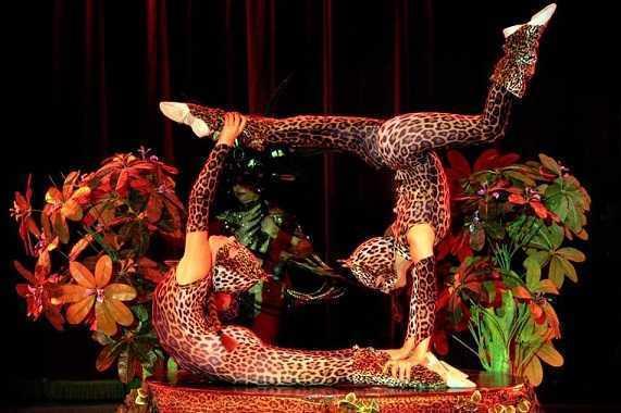 Maya Orfei Circo Madagascar dal 15 al 31/08/20 a Montenero di Bisaccia