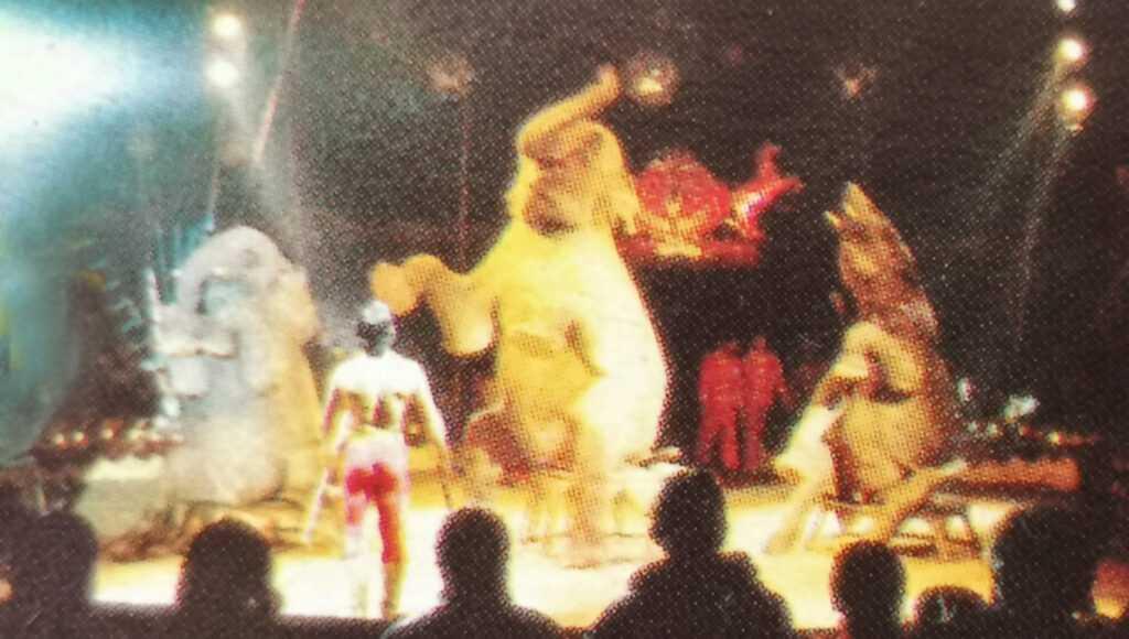 I 5 ELEFANTI DI CORRADO TOGNI NEL 1986 AL CIRCO DARIX TOGNI: Il Video
