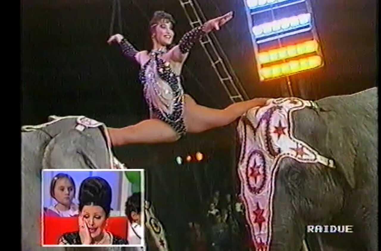 OMAGGIO A MOIRA Stefano e Lara mandano gli elefanti-1991-00