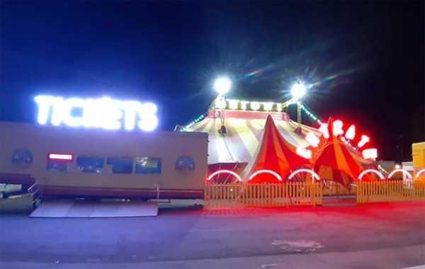 L'appello disperato del circo Grioni: aiutateci, serve cibo per personale e animali