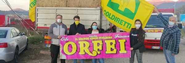 Oltre 60 quintali di fieno sono stati donati da Coldiretti Rieti al Circo Orfei
