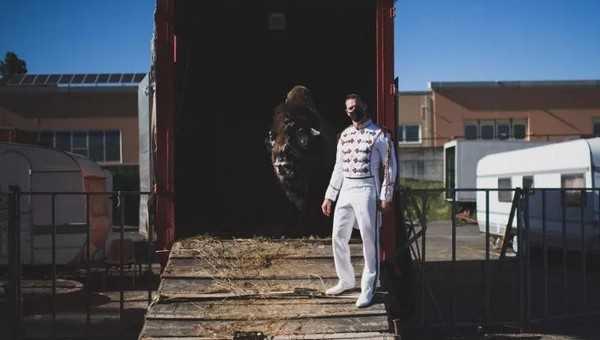 gli animali del circo hanno fame e Siena si mobilita