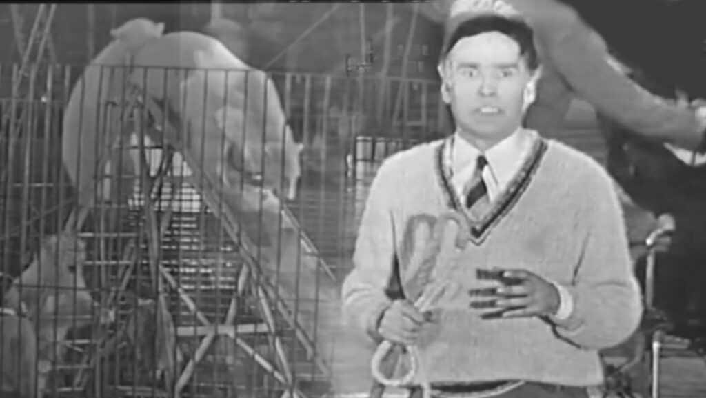 ORLANDO E MASSIMO ORFEI RACCONTANO GLI ORSI (1959/60): Il video