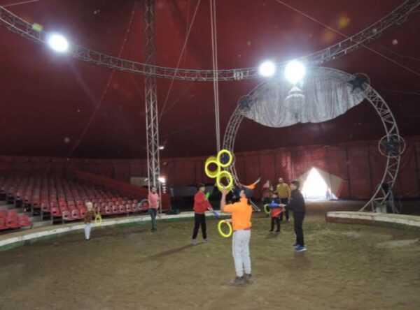 Circo in crisi, artisti e animali in grande sofferenza. Scatta la solidarietà