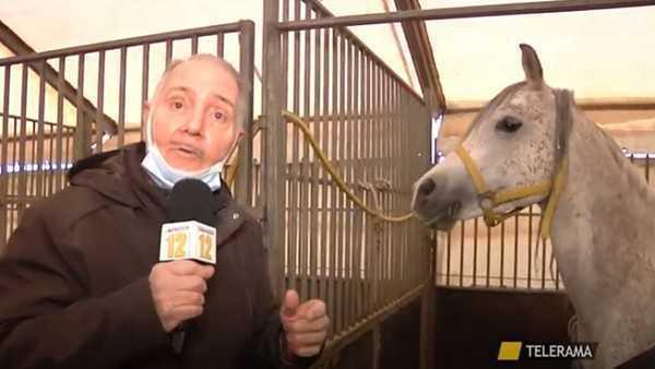 Circo Medrano: aiutate i nostri amici animali