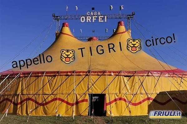 Circo Orfei