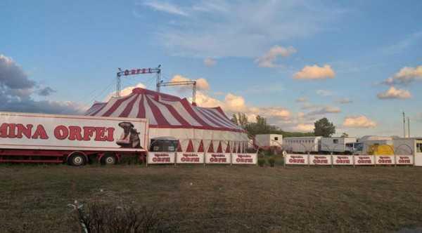in gravi difficoltà il circo romina orfei