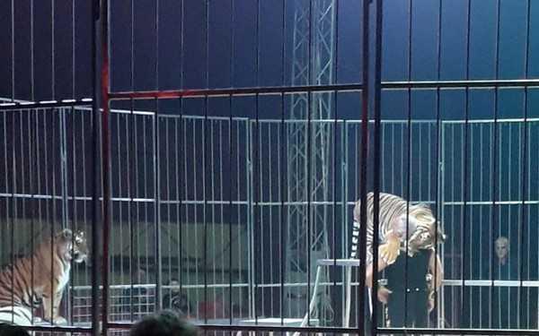 Circo bloccato dove è in arrivo il Luna Park