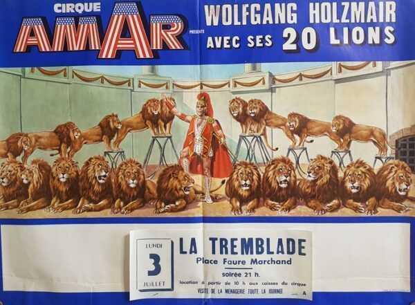 i leoni di Wolfang Holzmair