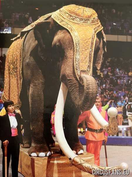 ringling bros barnum and bailey circus 1991 diretta streaming