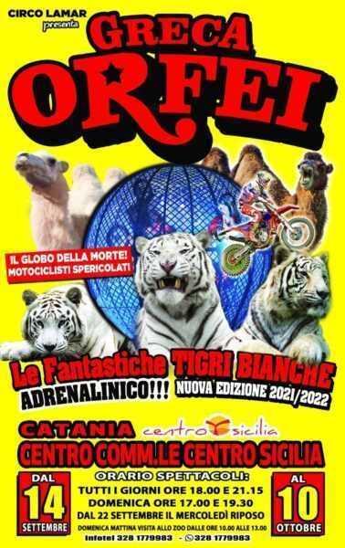 CIRCO GRECA ORFEI: Programma