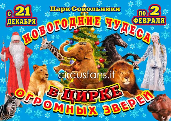https://www.circusfans.eu/wp-content/uploads/backup/IMAGES_ROBERTOCAROLI2013mosca05.jpg