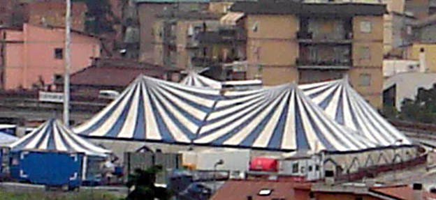 Circo Henry Niuman 2005