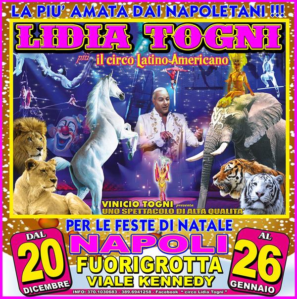https://www.circusfans.eu/wp-content/uploads/backup/images_lidiatogni2013napoli00.jpg